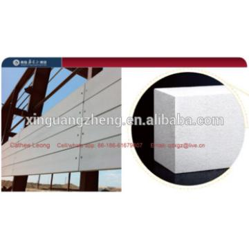Modern new material ALC/ACC panel for wall & roof application for housing project