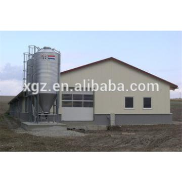 Galvanized steel frame automatically chicken house construction