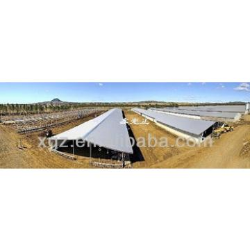best price chicken farm sheds and automic equipment system