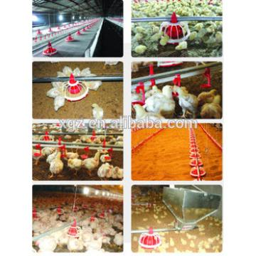 Professional Automatic layer chicken battery cage, poultry farm house and Equipment design