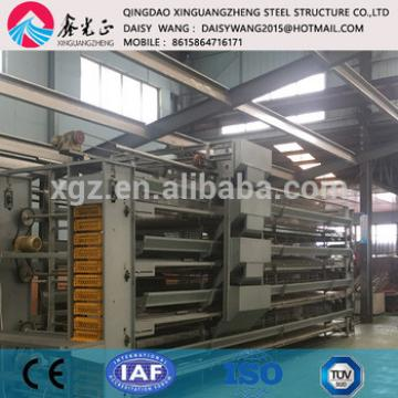 steel chicken rearing house and equipment
