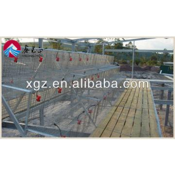 steel structure chicken layer poultry farm