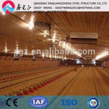 Supply farm design service/ rear chicken equipments and steel poultry house