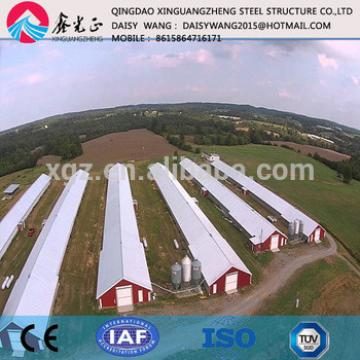 Prefab steel chicken rearing house and equipment supply and design