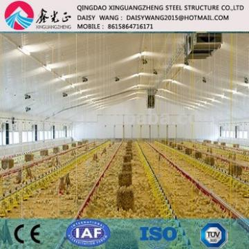 Large chicken farm rearing house and equipments