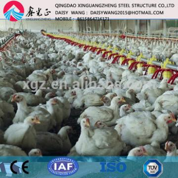 One stop service steel poultry house farm manufacture