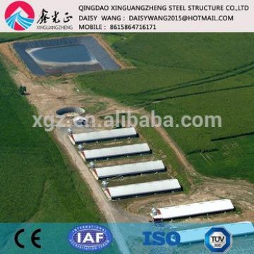 Automayic Prefabricated steel poultry houses farm