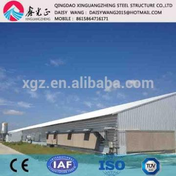 Modern automatic poultry shed and equipment