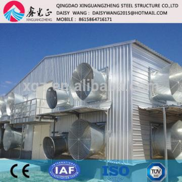 Modern steel poultry shed manufacture