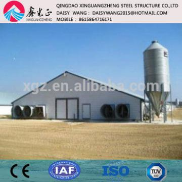 Metal poultry shed with new design and equipments