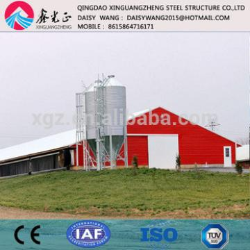 Modern large chicken farm metal poultry shed