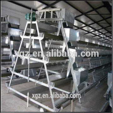 low cost structural steel Poultry Farm house and Equipment for sale