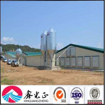 Prefabricated light steel poultry shed/steel poultry house/steel chicken house
