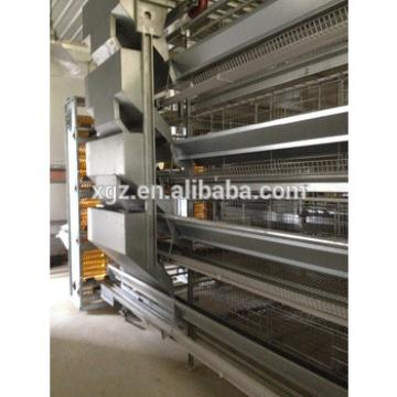 Automatic A/H type layer egg chicken cage poultry farm house design