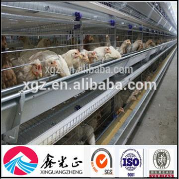 Best price automatic layer egg chicken cage poultry farm house design for Algeria