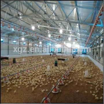 design layer poultry country chicken farms shed