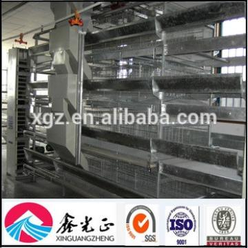 Large span Steel frame Prefabricated egg chicken house design for layers