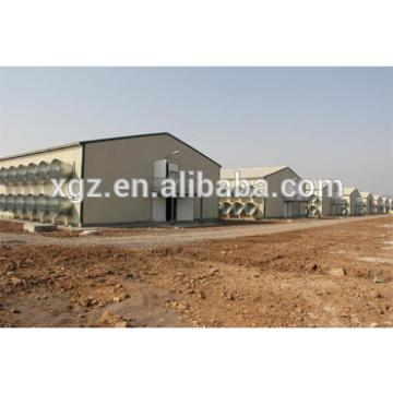 automatic laying hen battery cages/poultry farm design