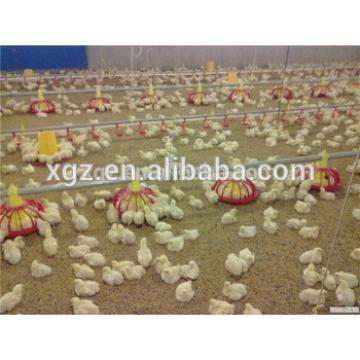 Professional chicken house/farm equipment for chicken breeding