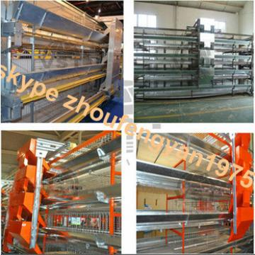 design High quality layer Automatic machine cage birds