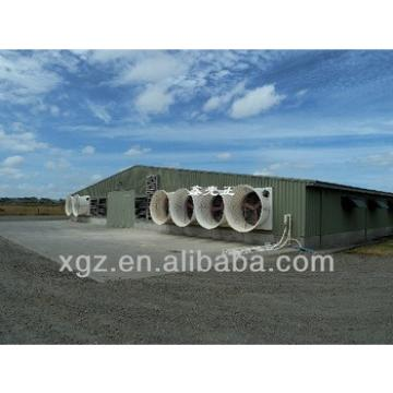 commercial chicken shed with automatic equipment for poultry farm