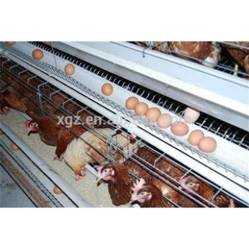 prefab automatic low cost laying hens house