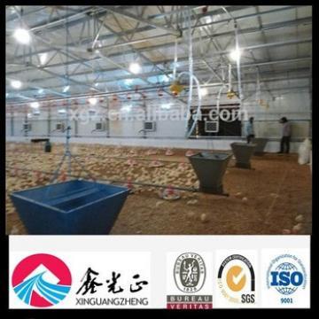 prefab chicken farm poultry house for floor feeding