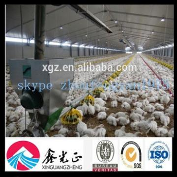 china layer poultry chicken breeding equipment