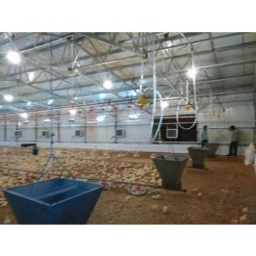 design Industrial Poultry layer Farming Equipment/Chicken farming equipment for sale