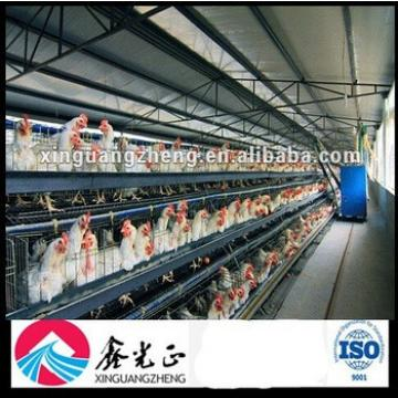 Controlled Chicken Poultry Shed Design