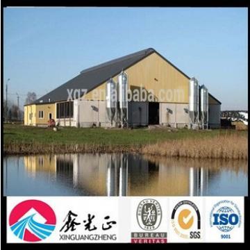 Prefab Chicken Poultry Farm Building