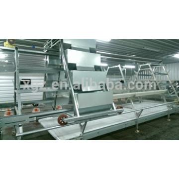 design poultry chicken farm equipment metal construction chicken