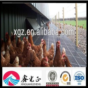 Steel Structure Control Shed Chicken Breeding