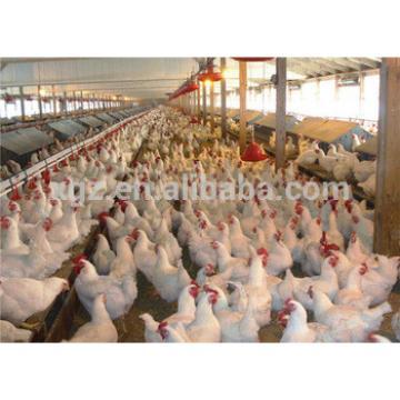 Morden design Steel Prefab Chicken House in Poultry Farm