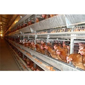 prefab automated layer poultry shed