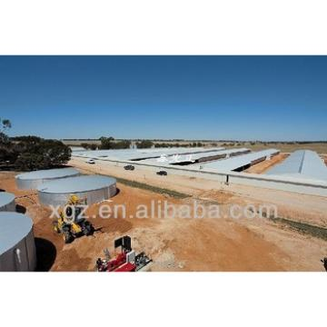 automatic chicken house poultry farm design for algeria