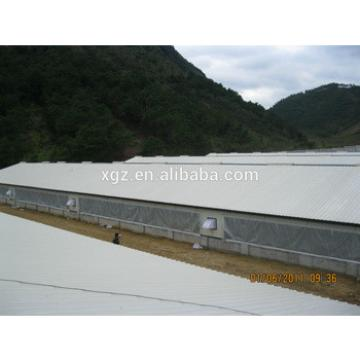 cheap hot selling sheds for poultry farm for sale in algeria