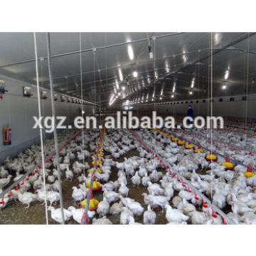 China Factory Supply chicken house shed