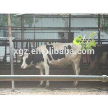 advanced automated constant temperature cow cattle farm