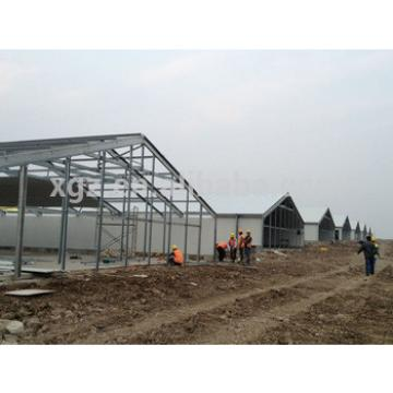 professional design poultry farm shed