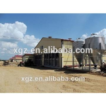 modern advnced automated low price chicken farm building
