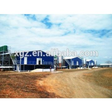 best selling modern design steel structure broiler chicken house sale in algeria