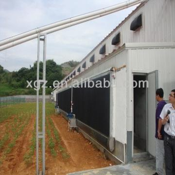 China steel broiler chicken shed/project/plan