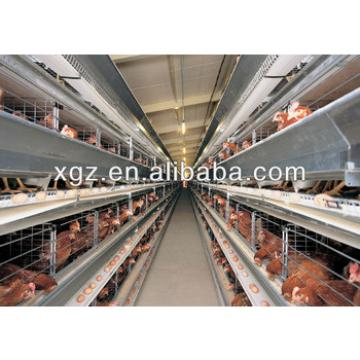 layer egg chicken house/steel frame poultry metal chicken shed