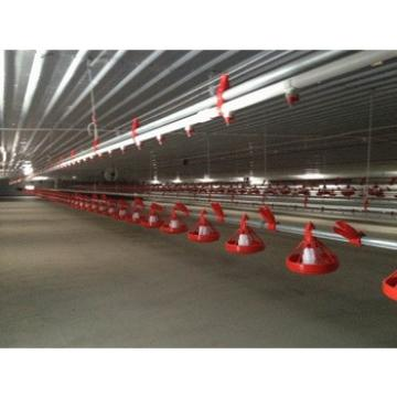 Prefabricated chicken broiler poultry building house