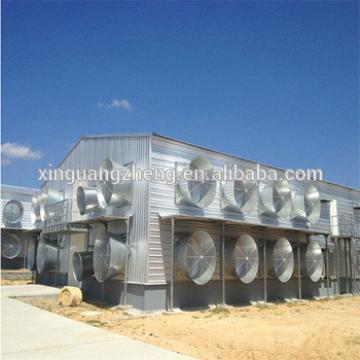 modern design chicken farming house