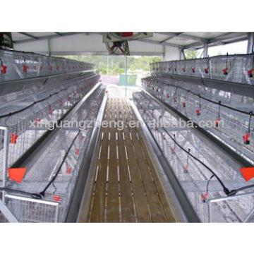 CE and ISO certificated Prefab high quality steel structure chicken shed building