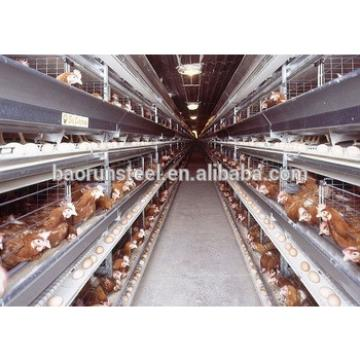 Finished Quickly Poultry Farm Made in China