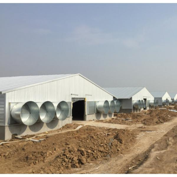 professional high quality with low price modern poultry house/chicken house hen building in China #1 image