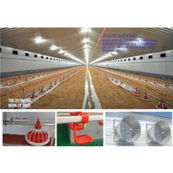 whole low cost prefab poultry farm house steel structure design #1 image